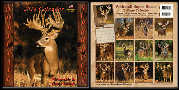 2018 Whitetail Deer Calendar   Big Whitetail Bucks by George